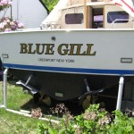 Blue Gill Rub Rails